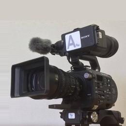 マルチメディアサポート